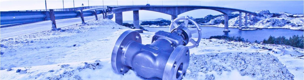 Gate Valve & Bridge